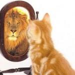 autoestima leon